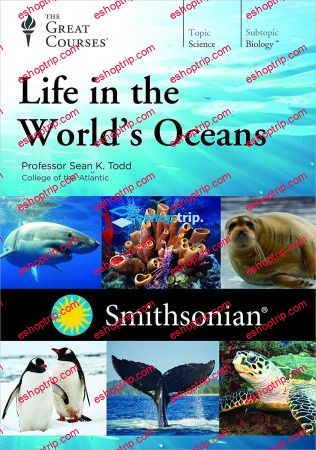 TTC Video Life in the Worlds Oceans