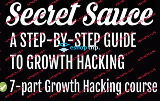 Vincent Dignan Secret Sauce The Ultimate Growth Hacking Guide