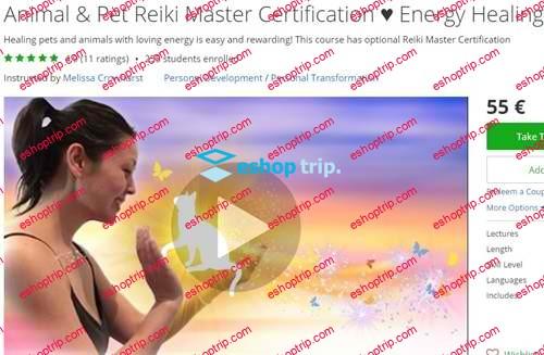 Melissa Crowhurst Animal Pet Reiki Master Certification Energy Healing