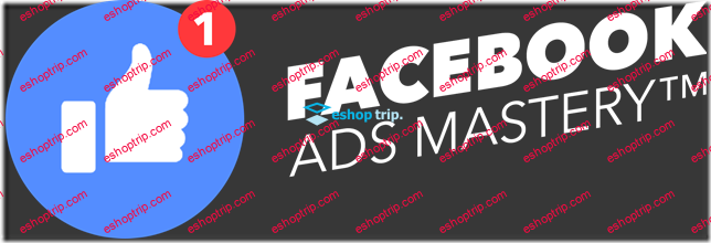 Dave Rogenmoser Facebook Ads Mastery
