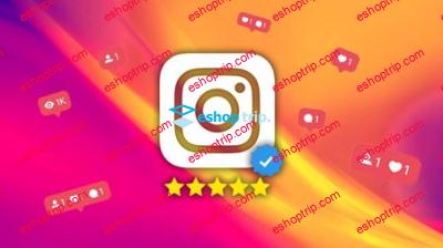 Instagram Business Mastery 2019 Expert Strategies