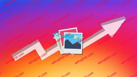 Instagrowth Formula 2019 Grow And Make Money On Instagram