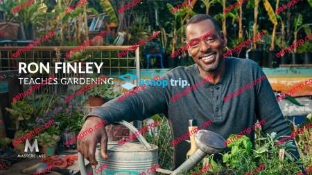 MasterClass Ron Finley Teaches Gardening