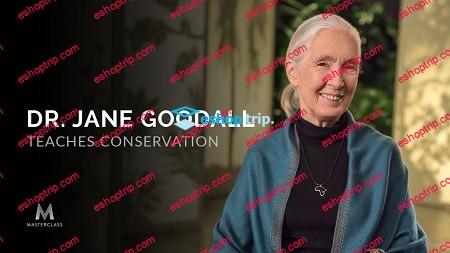 Masterclass Dr. Jane Goodall Teaches Conservation