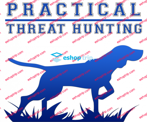 Practical Threat Hunting