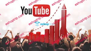 YouTube Audience Growth Grow an Audience from Scratch