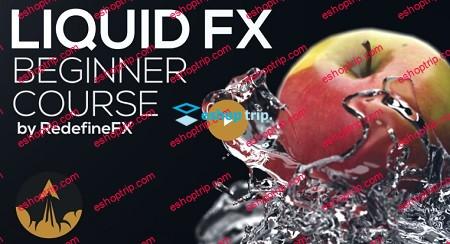 Phoenix FD Beginner Liquid FX Course 2019