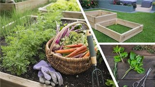 5 Easy to grow vegetables herbs plus vegetable planter Updated 6 2020