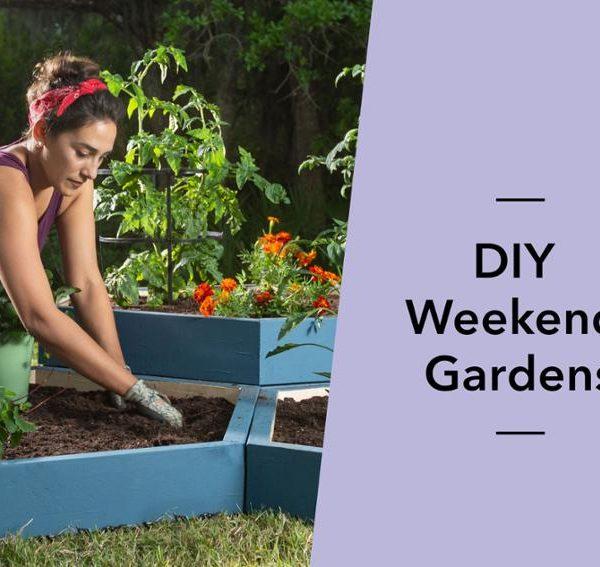 mybluprint DIY Weekend Gardens