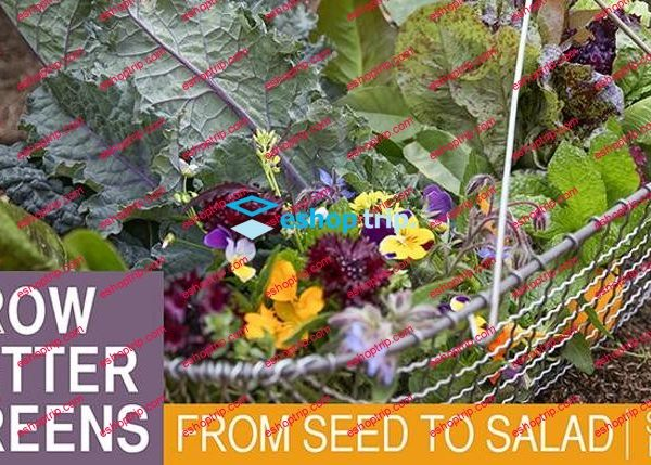 mybluprint Grow Better Greens From Seed to Salad