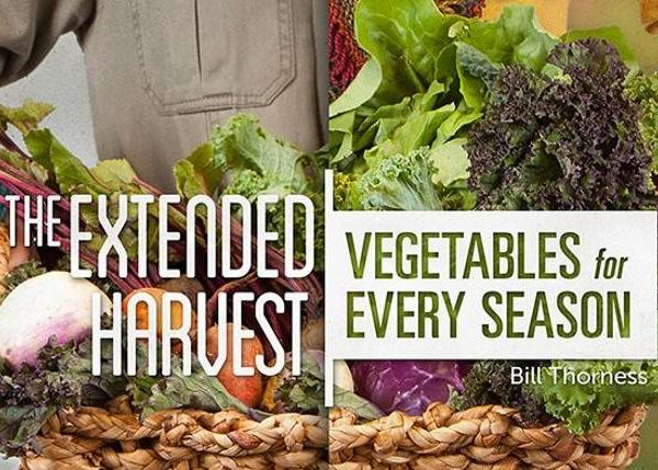 mybluprint The Extended Harvest Vegetables for Every Season