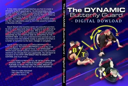 Firas Zahabi Dynamic Butterfly Guard