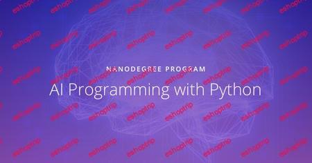 Udacity AI Programming with Python Nanodegree nd089 v1 0 0