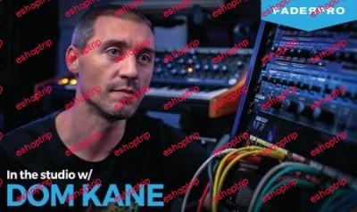Dom Kane In The Studio