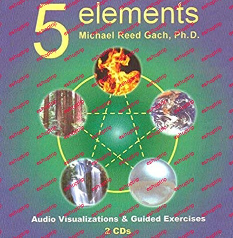 Michael Reed Gach 5 Element Visualizations