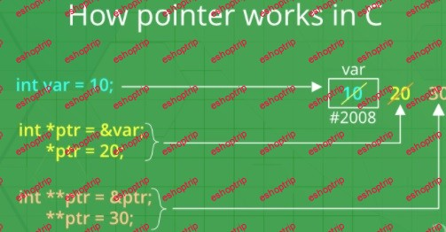 Pointers and References explained C C