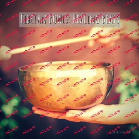 Lightrays Tibetan Bowls Healing Beats 2021