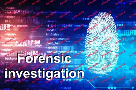 Forensics and Investigation
