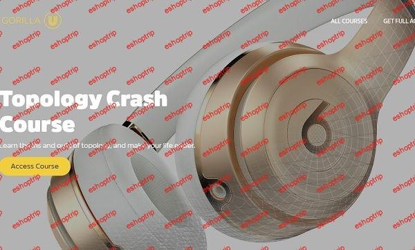 Greyscalegorilla Plus Topology Crash Course