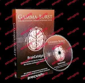 iAwake Technologies LLC BrainCatalyst Gamma Burst 2013